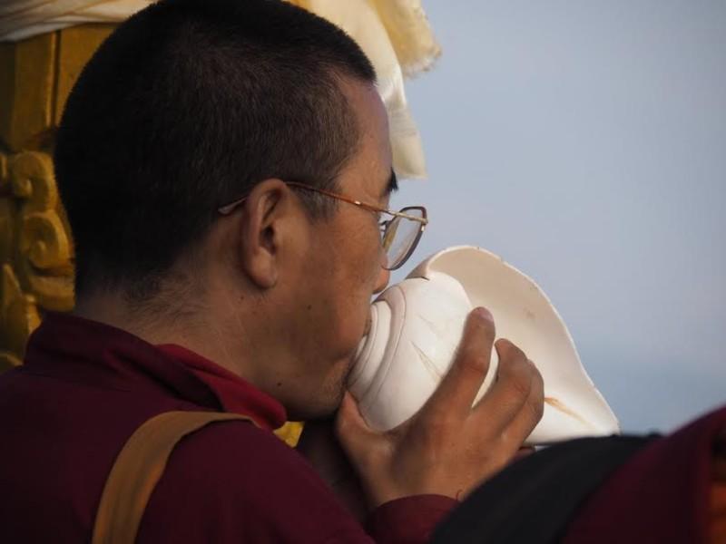 c- mnich i muszla